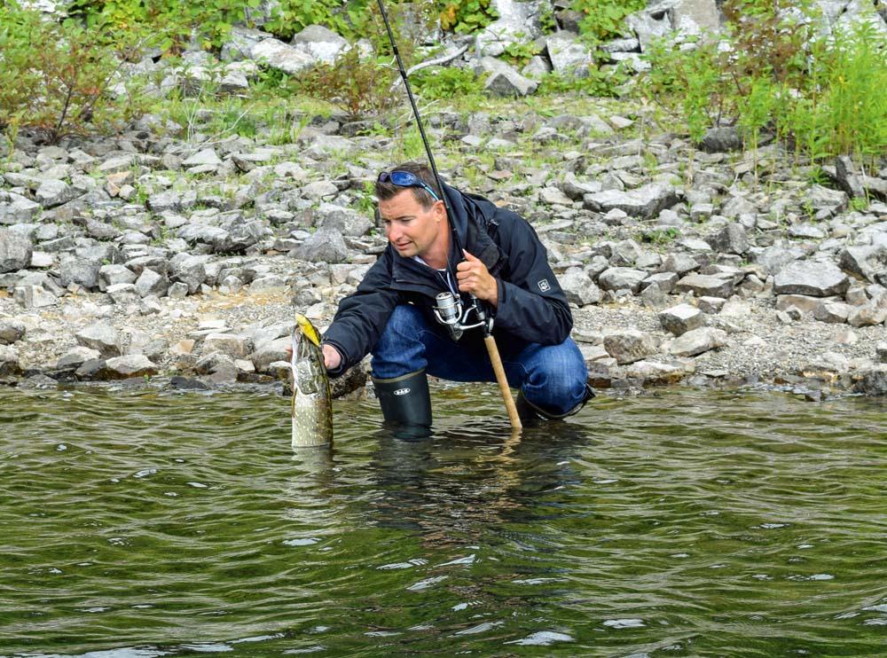 Auch das Uferangeln ist im Sorpesee nicht nur auf Raubfisch eine erfolgreiche Variante, um an Fisch zu kommen.