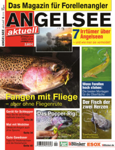 04_2019_angelsee-aktuell