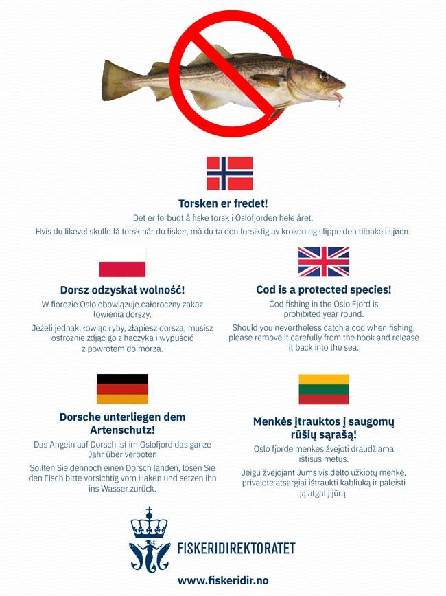Dieser Info-Flyer werden jetzt von den Behörden in Norwegen verteilt.