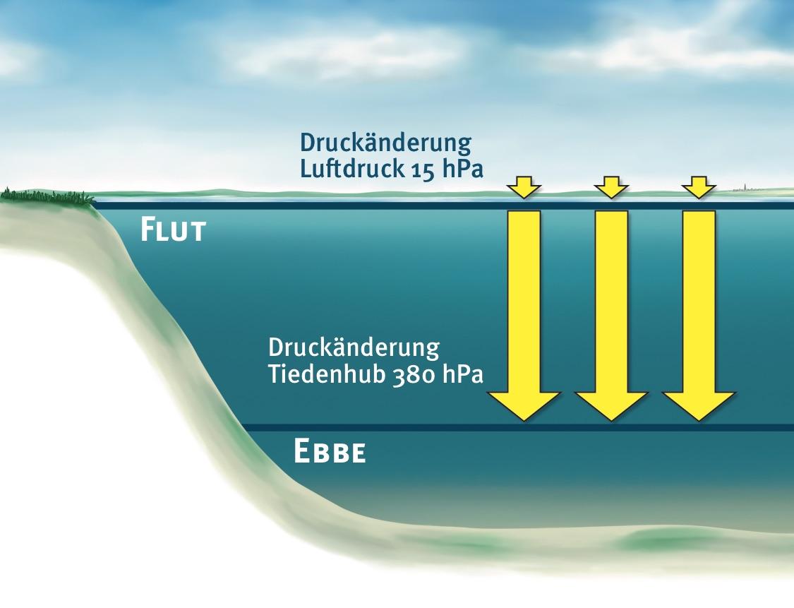 Gegen die gewaltigen Veränderungen des Wasserdrucks erscheint die Luftdruckveränderung bedeutungslos.