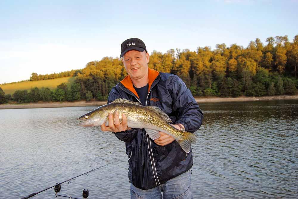 Wer beim Angeln im Diemelsee vom Ufer auf Zander und Co. fischen möchte, der hat gute Chancen beim Ansitzangeln mit Natürködern.