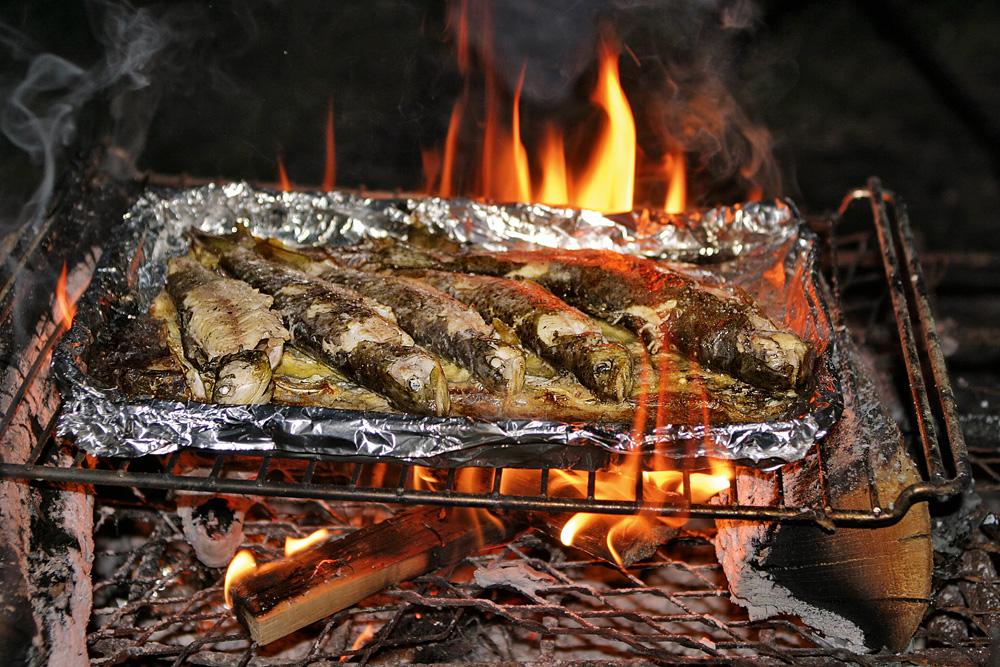 Schnell ein paar Freunde eingeladen und es kann losgehen: Frisch gefangener Fisch auf dem Grill - ein tolles (Geschmacks-)Erlebnis.