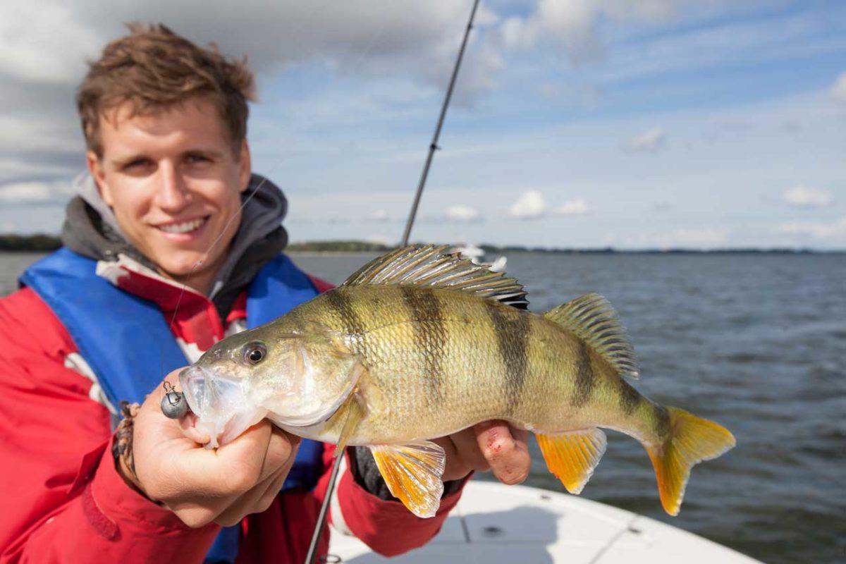 Das Angeln in Mecklenburg-Vorpommern bietet eine breite Facette an Gewässern und Fischen. Nicht umsonst ist es mit eines der beliebtesten Reiseziele für Angler.