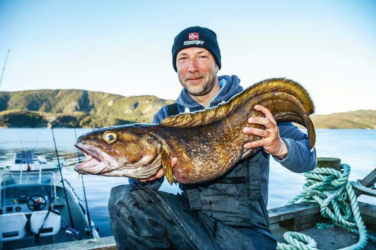 Egal ob Süß- oder Salzwasser: Ein Angelurlaub in Skandinavien verspricht tolle Fangmöglichkeiten in atemberaubender Naturkulisse.
