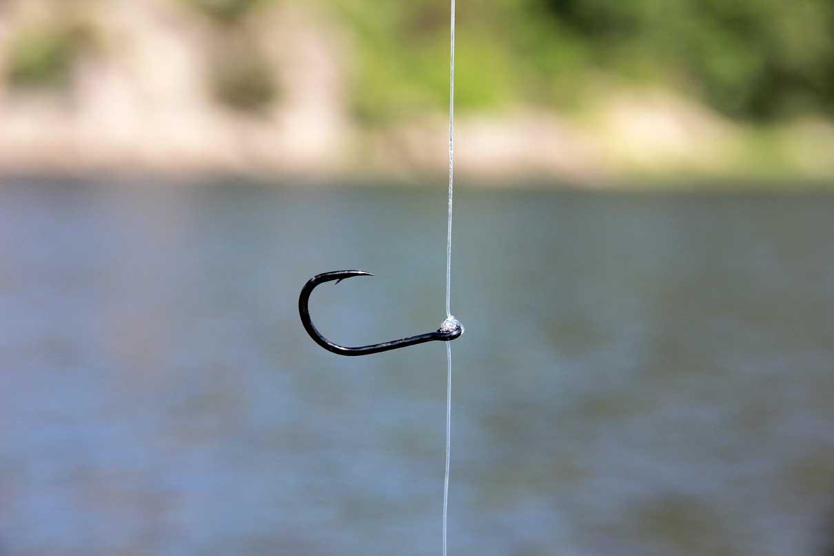 Der Palomarknoten lässt den Haken im rechten Winkel von der Hauptschnur abstehen.