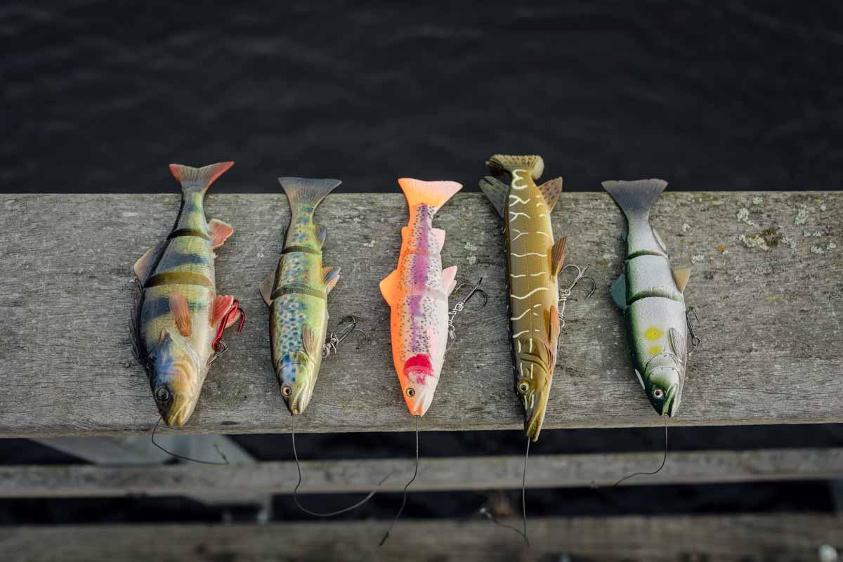 Swimbaits sind gute Köder zum hechtangeln in den großen Gewässern Hollands. Foto: Sportvisserij Nederland