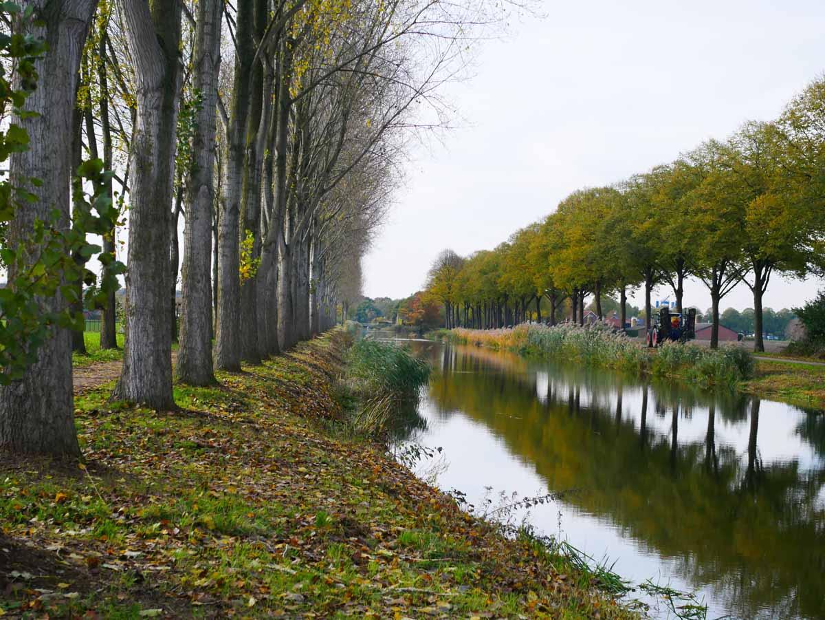 Nur eine Stunde vom Ruhrgebiet entfernt und immer gut für Hechte – das ist Noordervaart. Foto: Sportvisserij Nederland