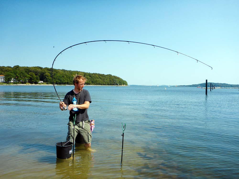 Vom Ufer aus ansitzen: neben Weißfischen sind auch die Räuber gut zu erreichen.
