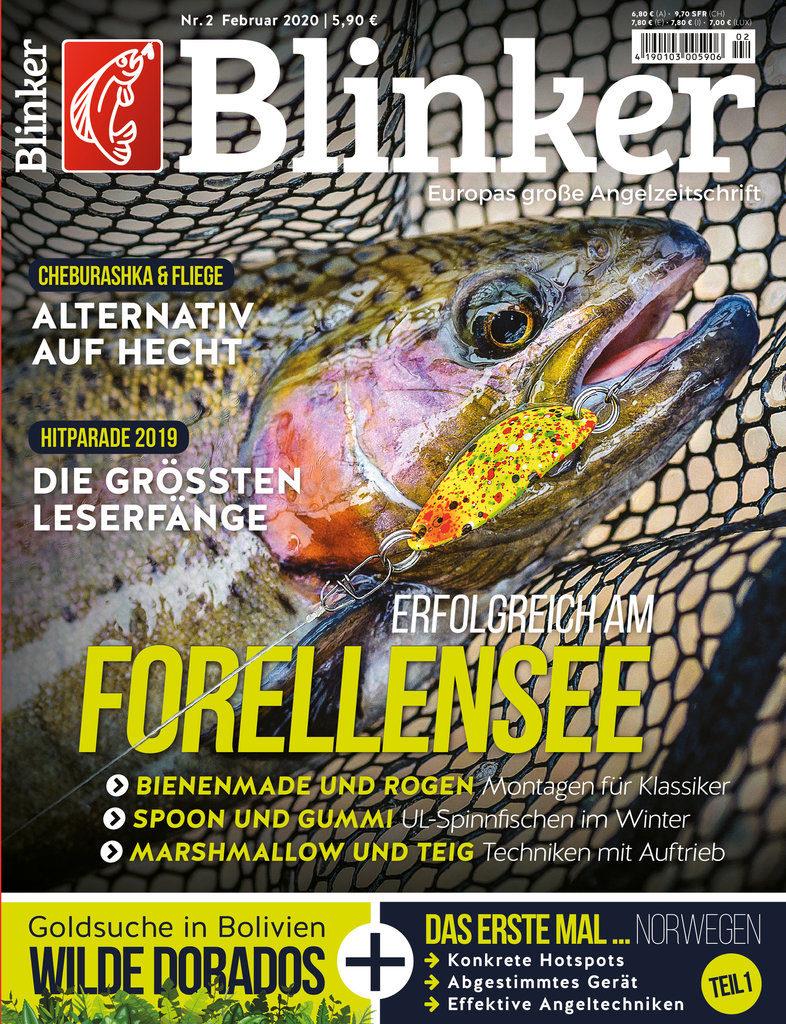 Blinker 02/2020