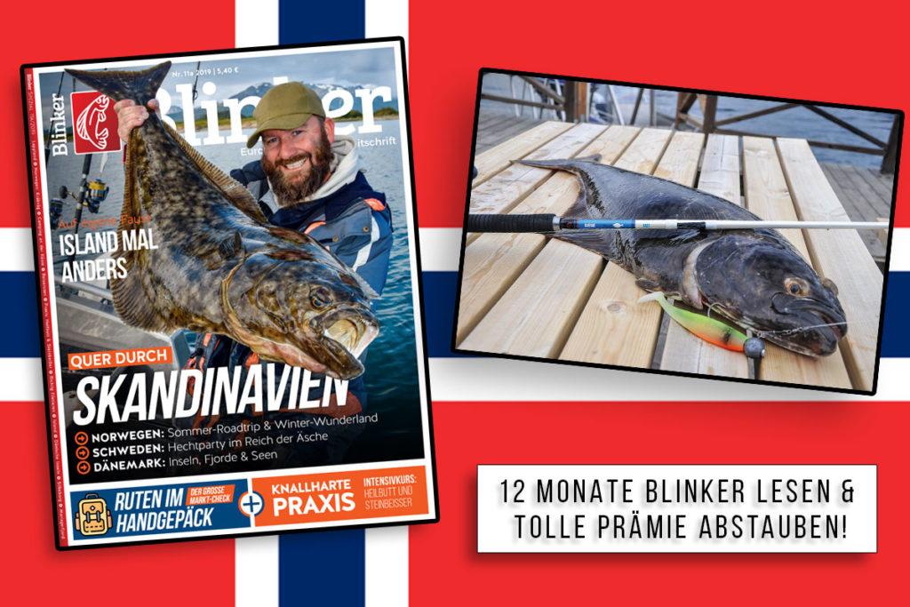 Das volle Norwegen-Paket! 12 Monate Blinker lesen und die Salt Nordic Big Game Inline von Savage Gear als Prämie – nur bei uns im Shop! Foto: BLINKER