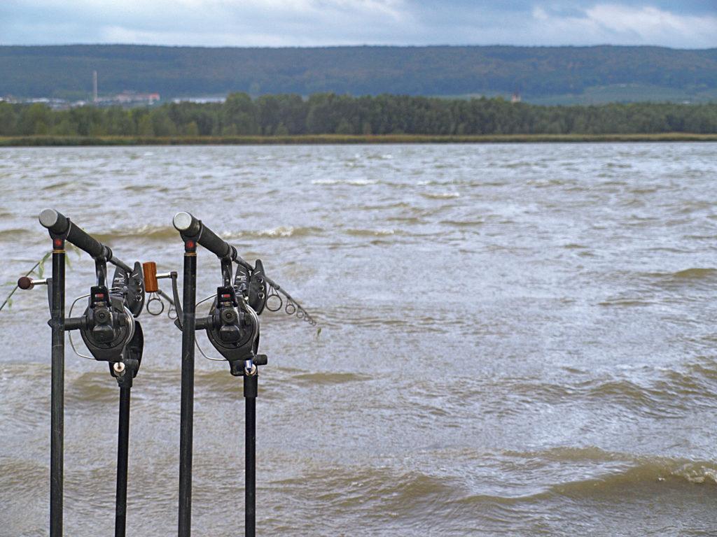 In den allermeisten Fällen ist das windzugewandte Ufer am erfolgsversprechensten.Foto: D. Konopatzki