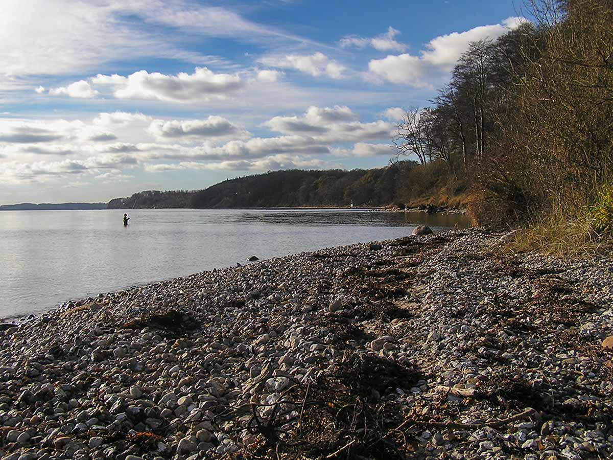 Der Haderslev Fjord ist ein Top-Gebiet für Meerforellen. Foto: Blinker