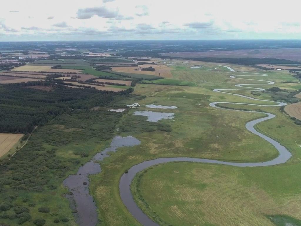 Die 100 Kilometer lange Skjern Au gilt als eines der besten Lachsgewässer Dänemarks. Foto: BLINKER