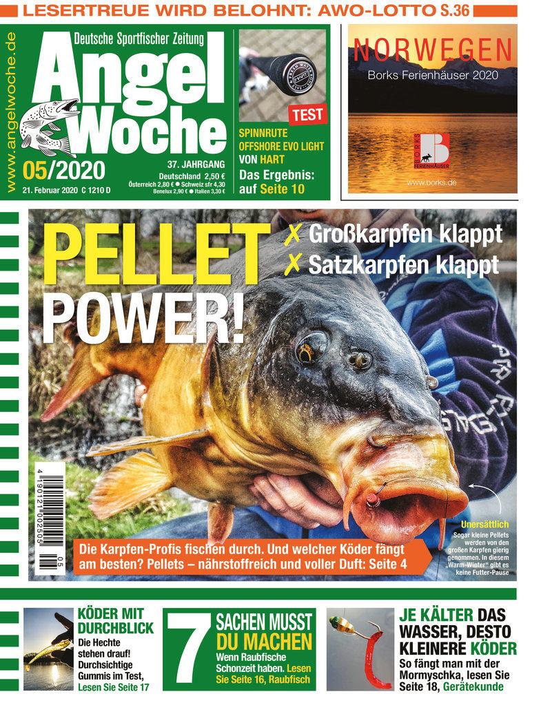 Titelbild AngelWoche Ausgabe 05/2020