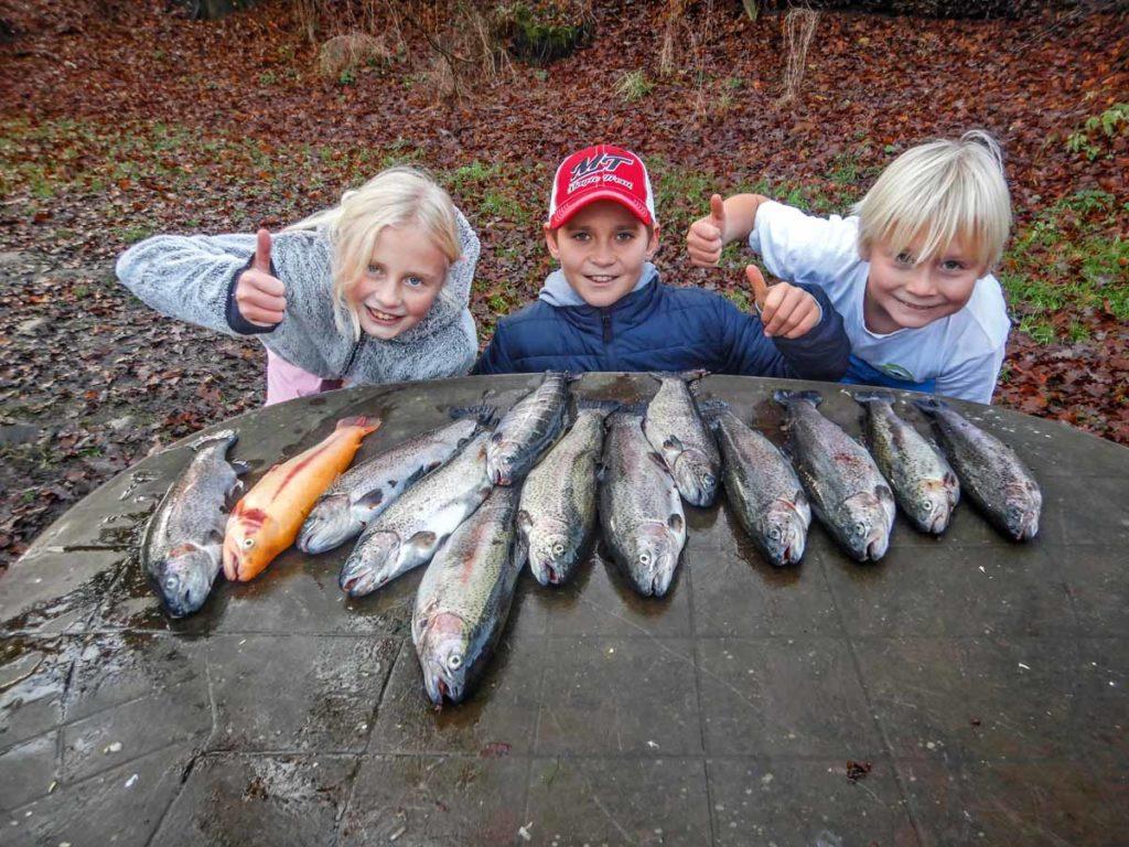Nach rund 3 Stunden sind es für die Kinder am Angelsee 13 Forellen geworden – sogar eine Goldforelle ist dabei! Foto: F. Schlichting