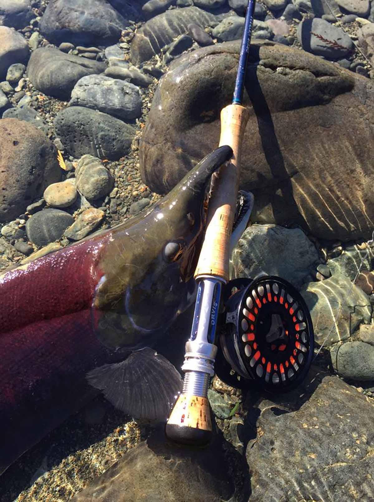 Die PEUX Speedline ist jedem Fisch gewachsen: Durch die ebenso hochwertige wie ausgeklügelte Bremse bleibt ihr stets Meister im Drill. Foto. PEUX Flyfishing