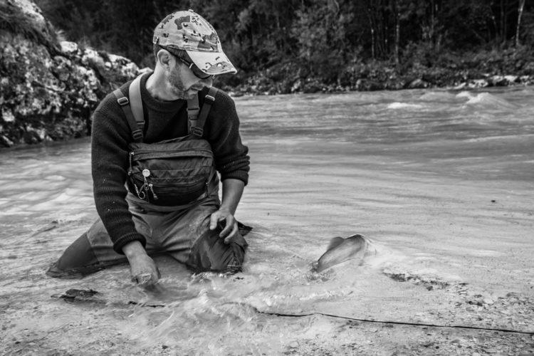 Ein Entnahmefenster verpflichtet Angler auch Fische über dem Maximalmaß schonend zurückzusetzen.