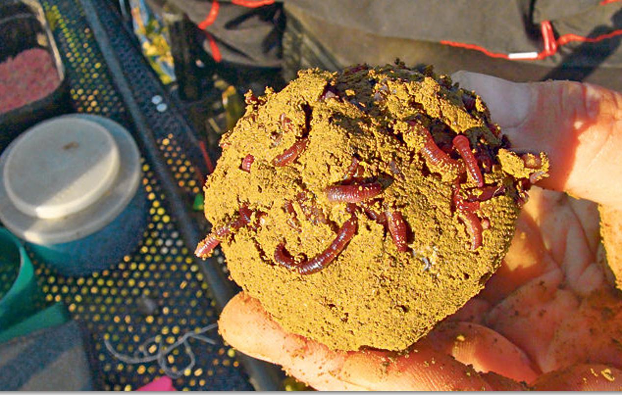 Diesem Friedfischfutter aus Maismehl, gemischt mit Erde, wurden Rotwürmer hinzugegeben, um die Zielfische bei Laune zu halten. Dazu liefern die roten Würmer im Futter noch einen hohen Kontrast.