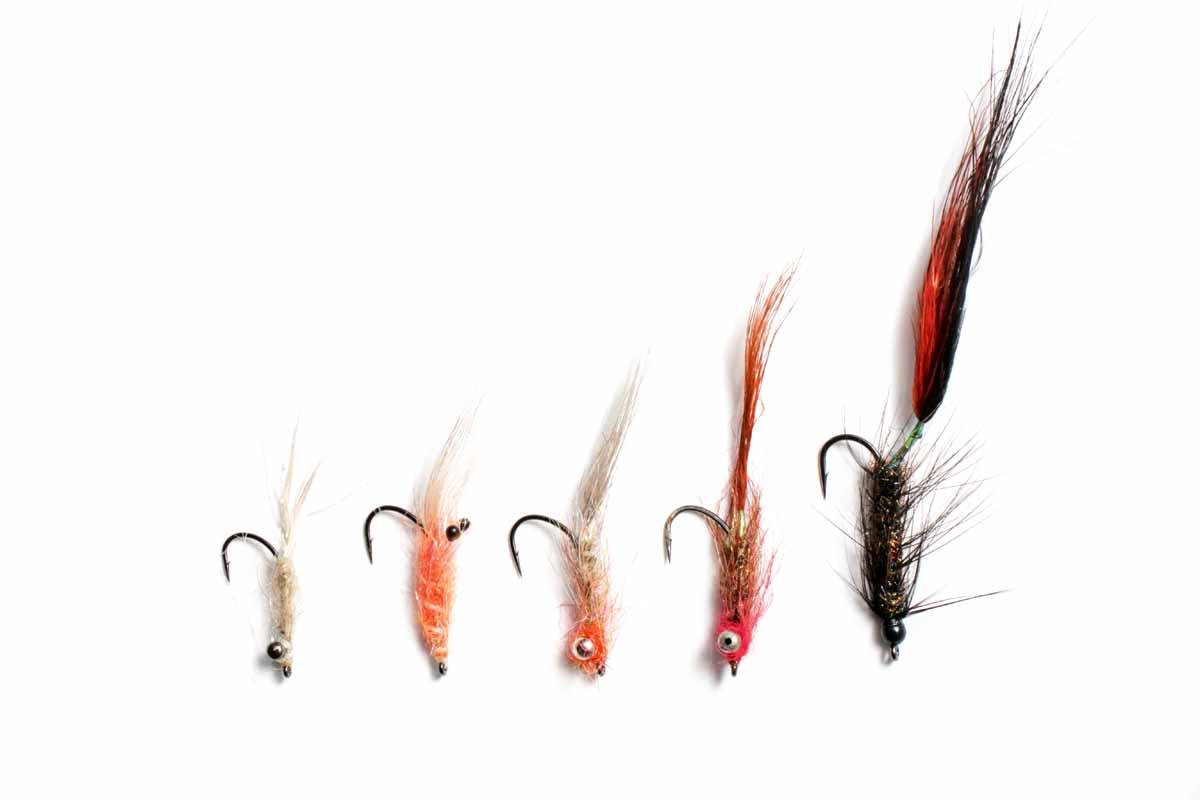 Ein paar kleine Muster in verschiedenen Farben und ein Wurm-Imitat (rechts) reichen für fast alle Küsten-Situationen und Fischlaunen.