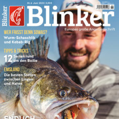 BLINKER