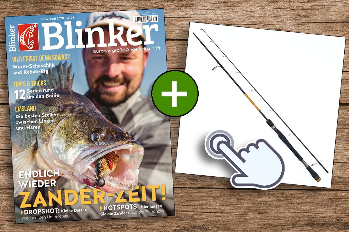 Jetzt Blinker abonnieren und die Sportex Curve Spin GT-3 zum absoluten Vorteilspreis erhalten! Bild: BLINKER