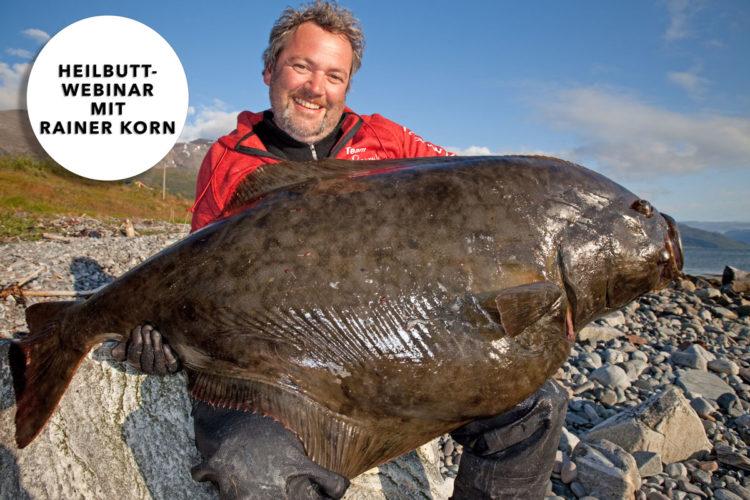 """Sind auch Sie von den Giganten der Nordmeere fasziniert? Dann ist das Webinar """"Die Königsklasse: Spinnfischen auf Heilbutt"""" genau das Richtige für Sie! Foto: R. Korn"""
