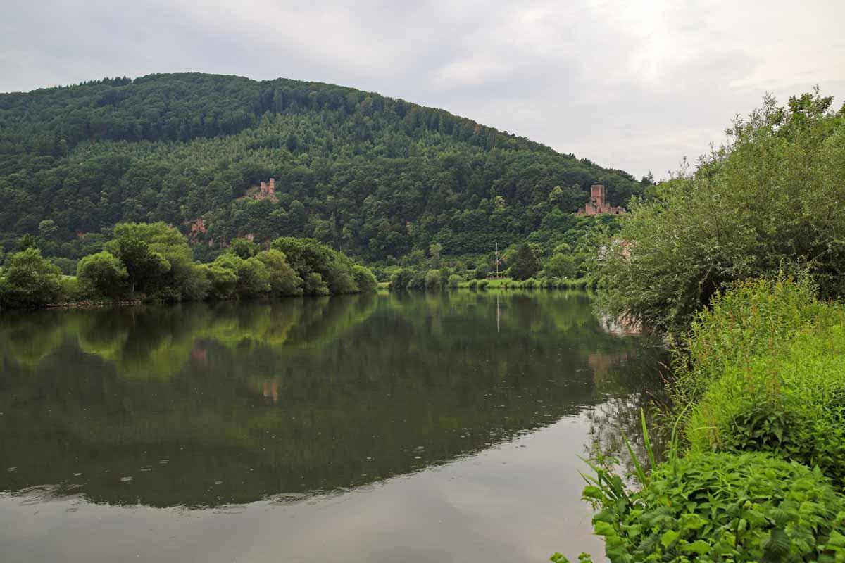 Das Neckartal zwischen Neckarsteinach und Neckarzimmern besticht durch eine malerische Landschaft.