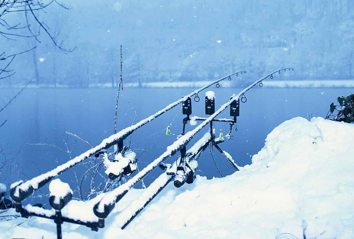 Das damals noch aktive Kernkraftwerk in Obrigheim sorgte auch im tiefsten Winter dafür, dass der Fluss ständig acht Grad warm war.