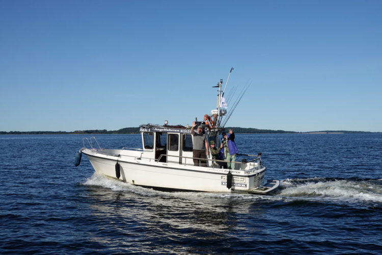 Mit großen Motorbooten ging es auf den Bodden als auch auf die Ostsee Kurs Hecht, Barsch und Dorsch. Foto: R. Korn