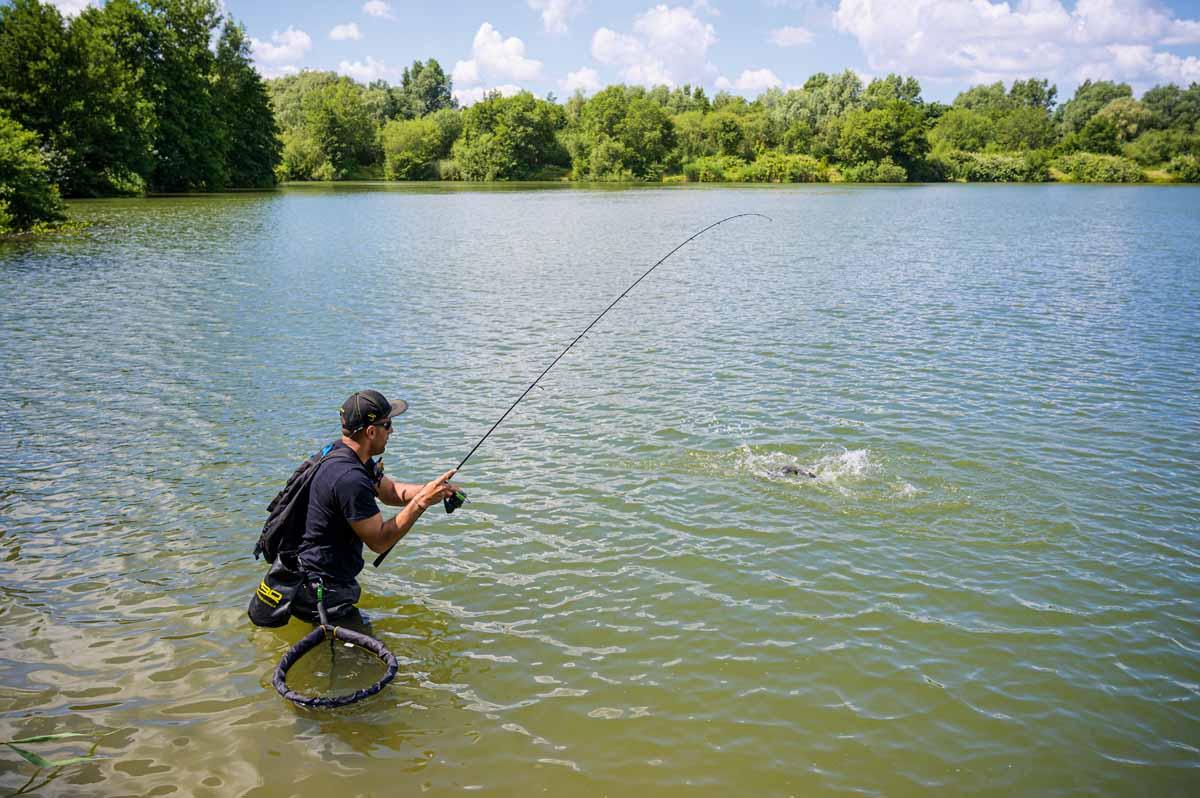 Die Rute ist krumm und ein Stillwasser-Zander schlägt an der Oberfläche. Das kann man an vielen Vereinsgewässern erleben.