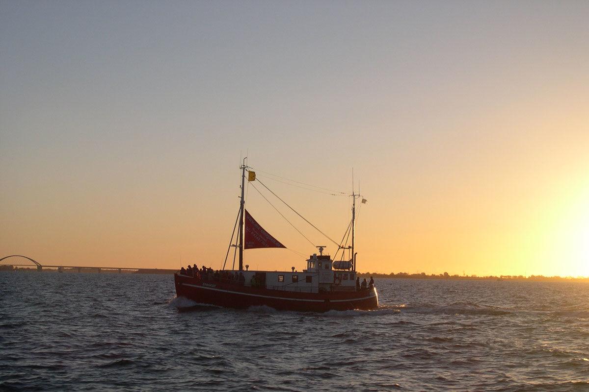 Mehrere Naturschutzzonen in der Ostsee sind seit 2017 für Kutter- und Bootsangler gesperrt. Foto: D. Schröder