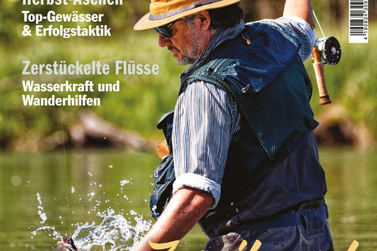 Die neue FliegenFischen 6/2020 ist ab sofort im Handel und online erhältlich! Bild: FliegenFischen