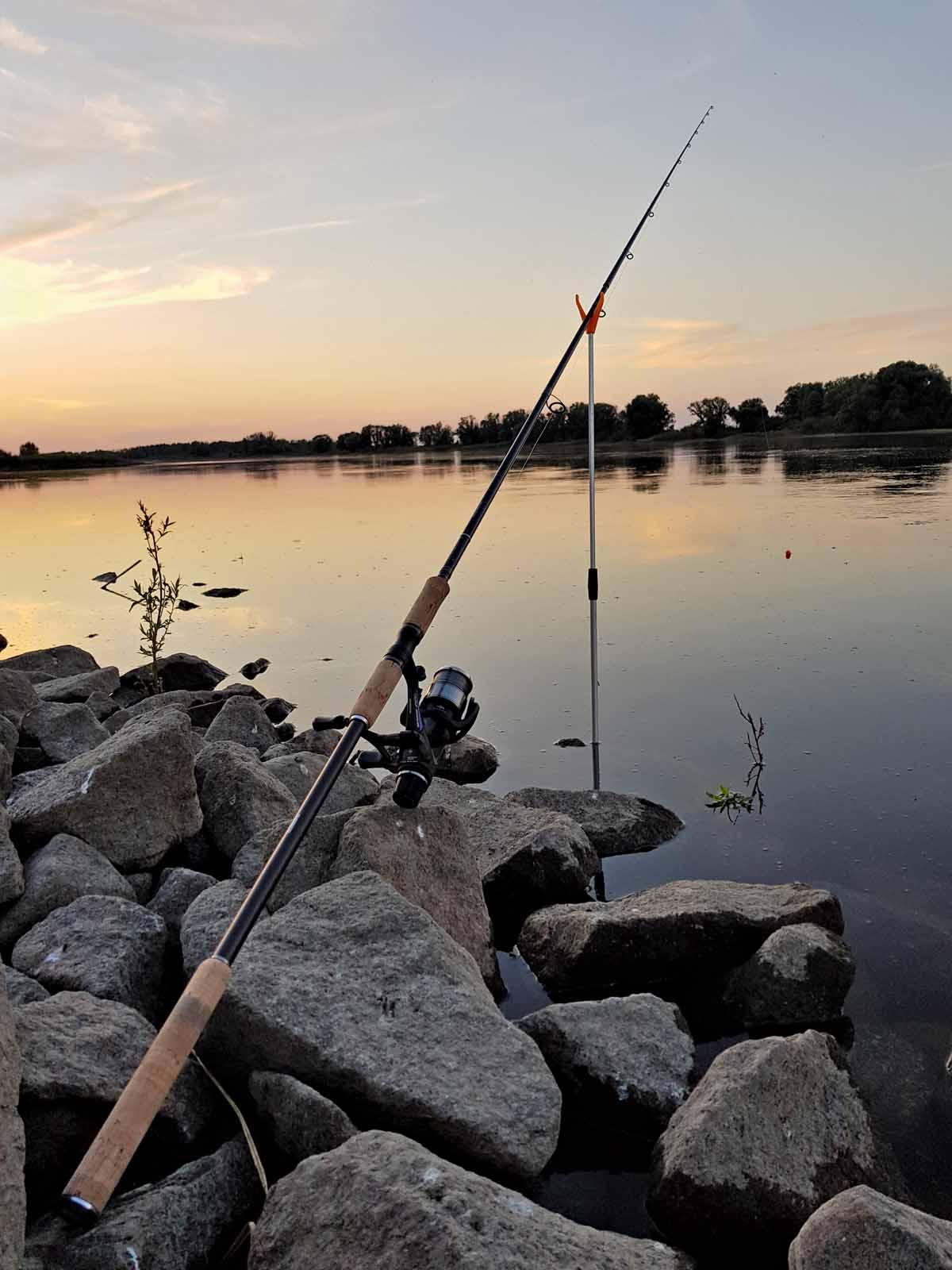 Eine ordentliche Naturköderrute zum Zanderfischen sollte etwa 3,50Meter lang sein und zwischen 20 und 80Gramm Wurfgewicht haben, je nach Gewässertiefe oder Strömung.