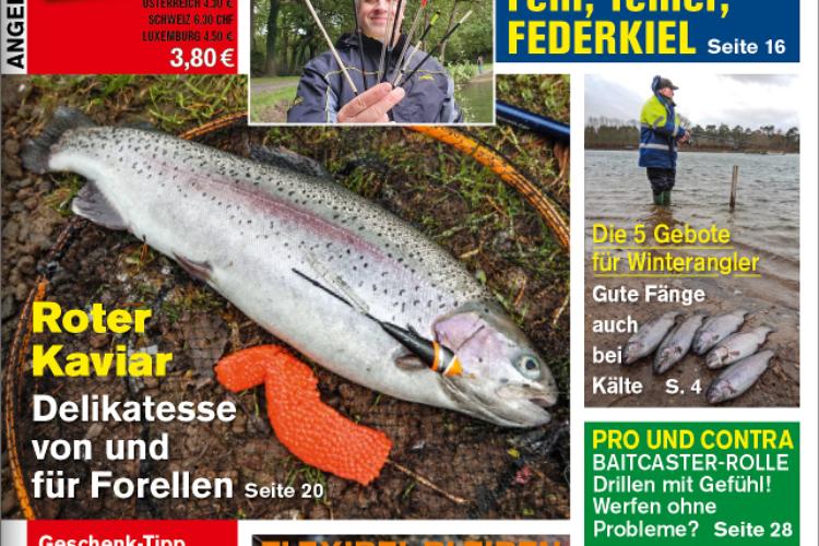 Die neue ANGELSEE aktuell 01/21 – ab sofort im Handel und online erhältlich!