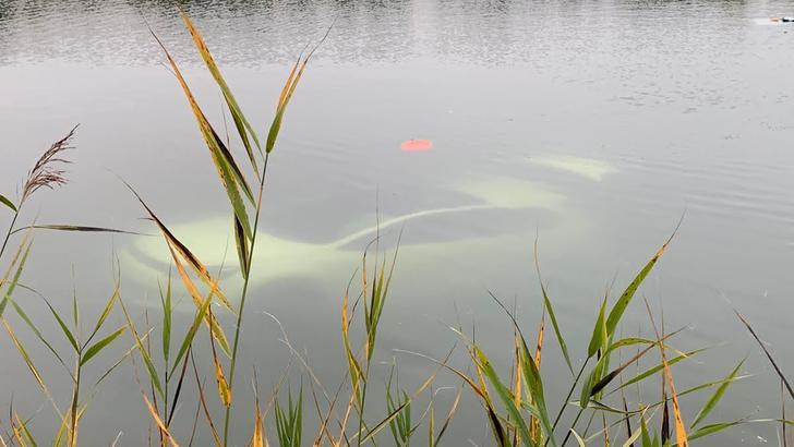 Durch seine weiße Farbe war das Auto im Forellensee gut zu erkennen – Glück im Unglück. Foto: Freiwillige Feuerwehr Burgdorf