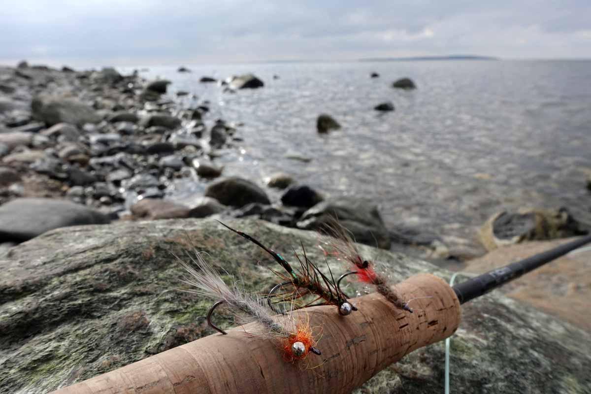 Unbeschwerte Fliegen oder sehr leichte Küstenblinker sind aufgrund der oft flachen Angelplätze die erste Wahl. Foto: J. Radtke