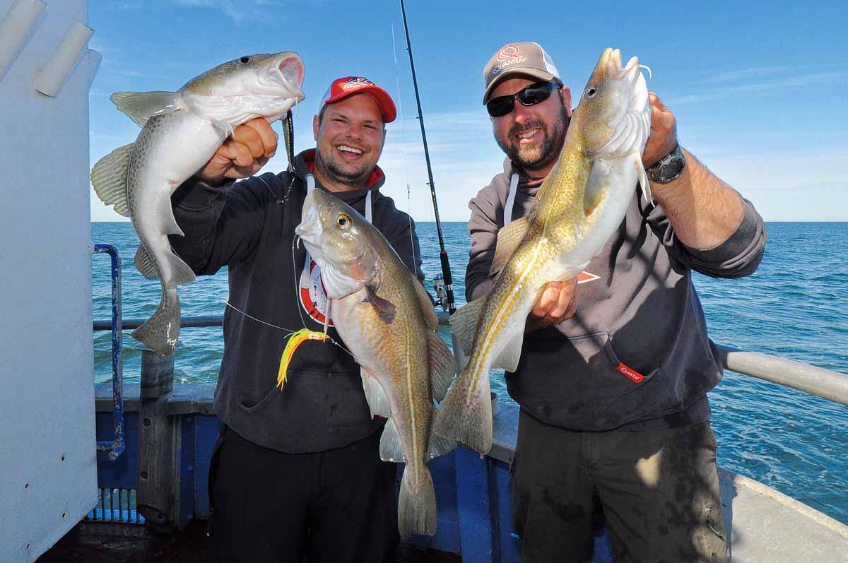 Pilker oder große Gummis fangen immer am gelben Riff. Doch an manchen Tagen bringt der Beifänger einfach mehr Fische. Foto: B. Hühnken