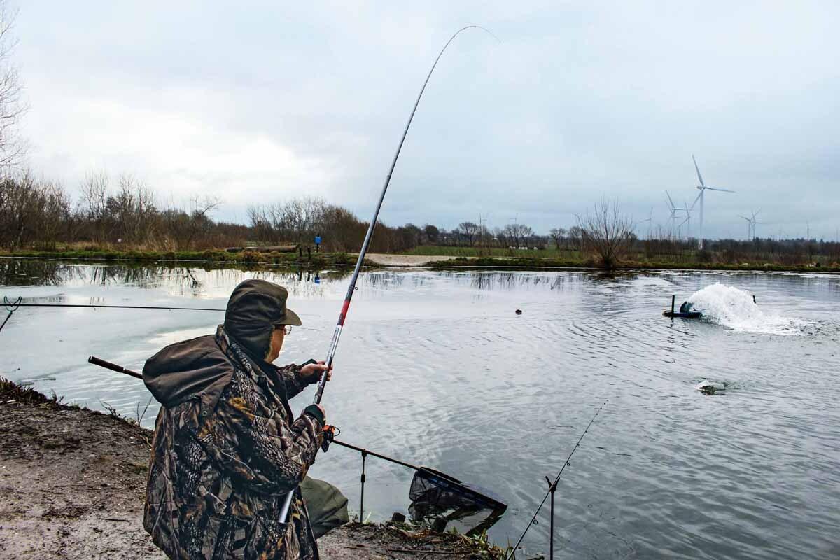 Fish on! Die feine Spitze der Bolognese-Rute federt die Fluchten auch größerer Gegner souverän ab. Der Fisch biss in der Nähe des Sprudlers, der das Gewässer offen hält. Foto: J. Radtke