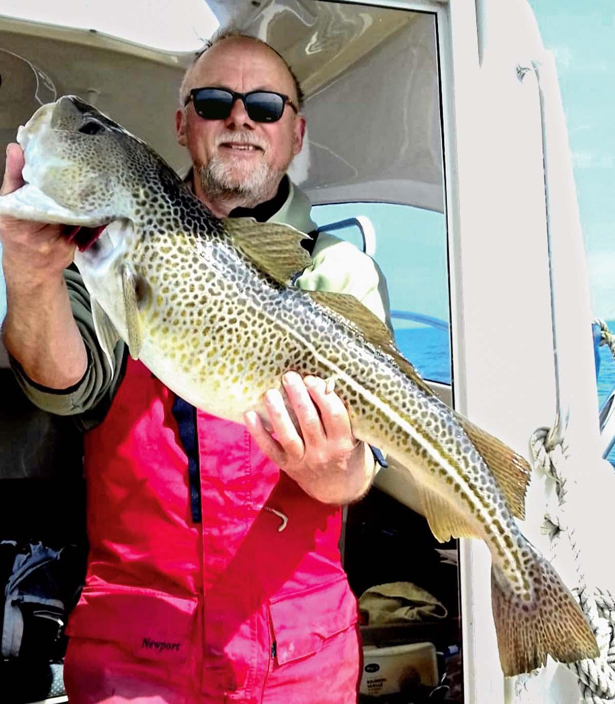 """Mit einem """"Wasabi""""-Köder, einem Speedjig aus Japan, fing Herold Baartz seinen 86 Zentimeter langen Dorsch in der Ostsee. Bei sonnigem Wetter biss der Leopard vor Warnemünde. Drilldauer: knapp 10 Minuten."""