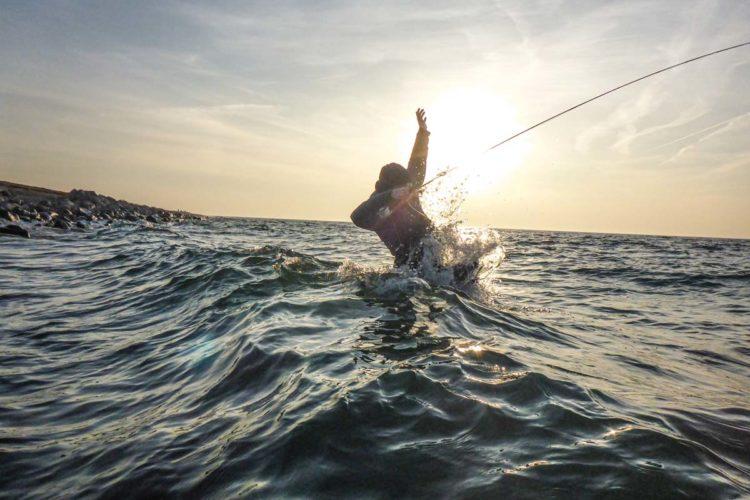 Vor allem zwei Faktoren, die fangentscheident sein können, werden vom Wind beim Meerforellenangeln maßgeblich beeinflusst. Und zwar hat der Wind Auswirkung auf die Verteilung der Wassertemperatur und das Nahrungsangebot. Zwei Faktoren, die wiederum bestimmen wo sich Meerforellen aufhalten.