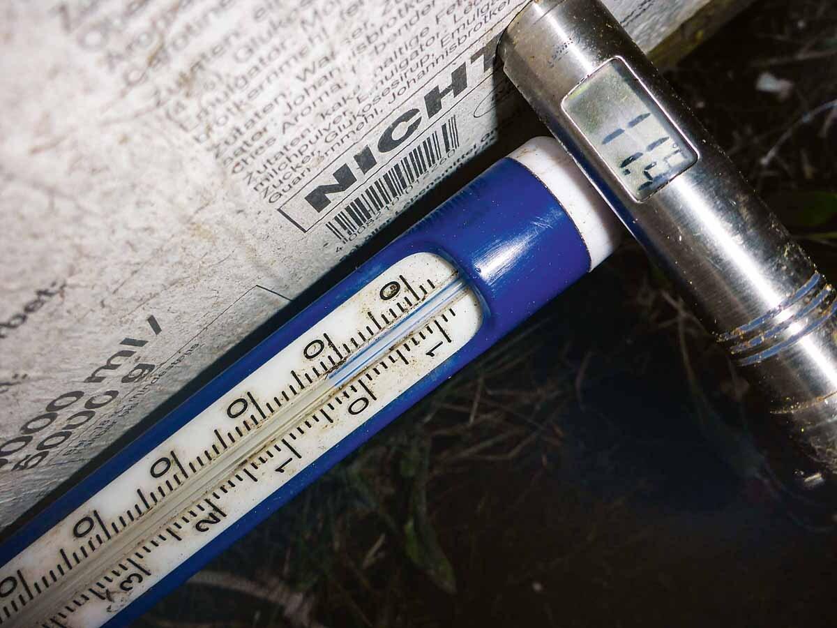 Schön muckelig in der Kiste: Für die Wurmzucht spielt die Temperatur eine wichtige Rolle. Das Außenthermometer zeigt 2° C, in der Kiste herrschen über 11° C. Bakterien und die Würmer heizen hier auf. Selbst im Winter bleibt der Kompostkern frostfrei. Foto: T. Pruß