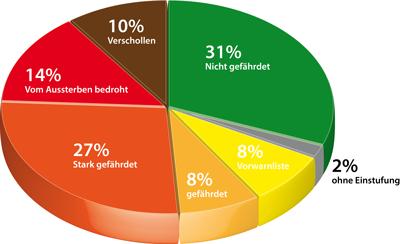 Rote Liste der Fische am Beispiel Baden-Württemberg: Nur noch 31% aller Fischarten gelten als nicht gefährdet. Mehr als die Hälfte sind stark gefährdet, vom Aussterben bedroht oder bereits ausgestorben. Grafik: DAFV