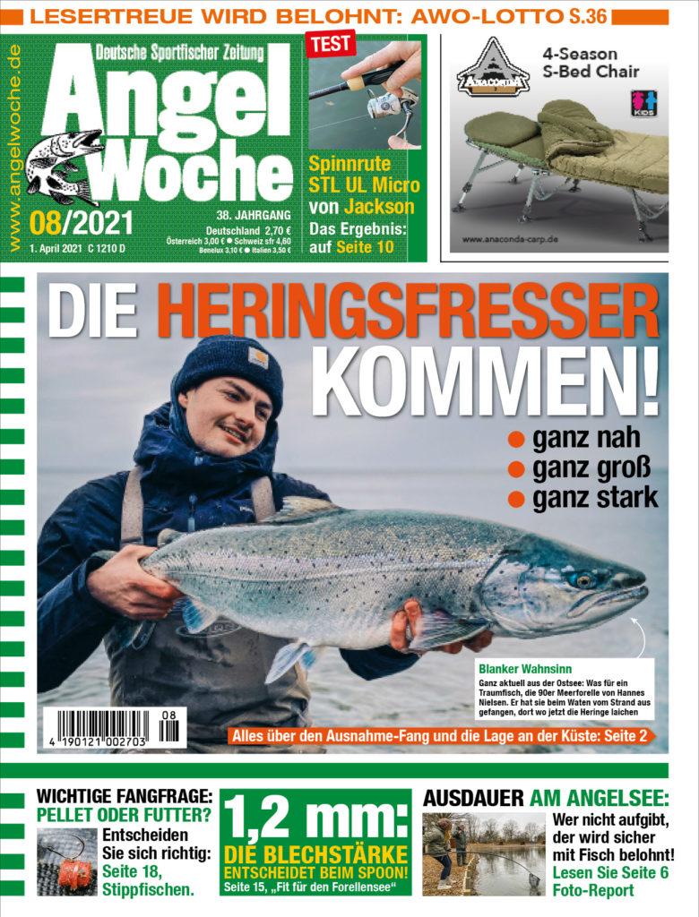 Meerforelle, Hering, Dorsch - Silber, Silber, Gold! Mehr über die Fische der Ostseeküste erfahrt ihr in der AngelWoche 08!
