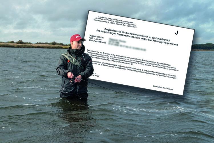 In Mecklenburg-Vorpommern benötigst Du einen Fischereischein und eine Angelerlaubniskarte für die Ostsee.