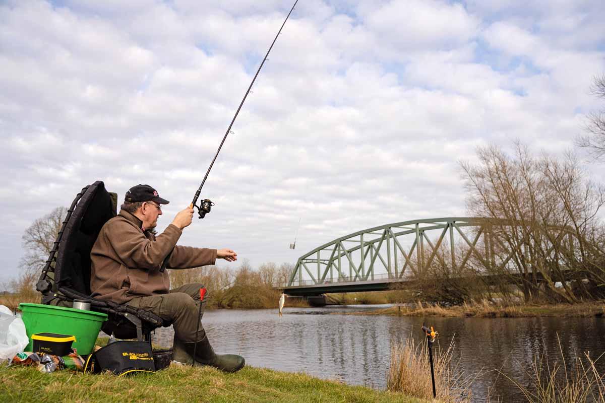 Kleine Fische können Sie beim Feederangeln ganz einfach zu sich heranpendeln, ab etwa 400 Gramm Fischgewicht sollten Sie jedoch den Kescher nutzen. Foto: F. Pippardt