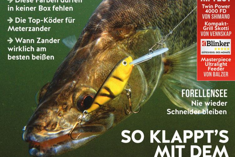 Der neue BLINKER 06/2021 – im Handel und online erhältlich! Bild: BLINKER