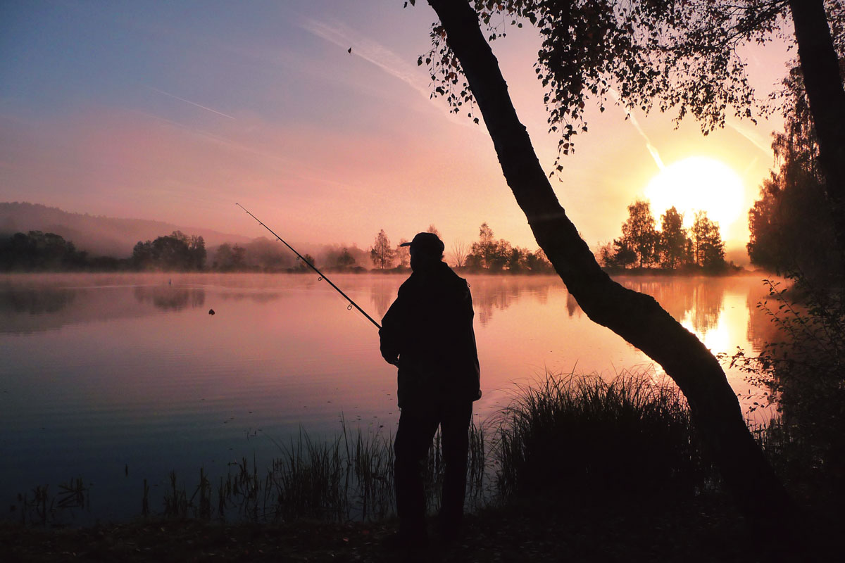 Während der nächtlichen Ausgangssperre in Bayern darf ab sofort wieder zu Hegezwecken auf Waller gefischt werden. Foto: E. Hartwich