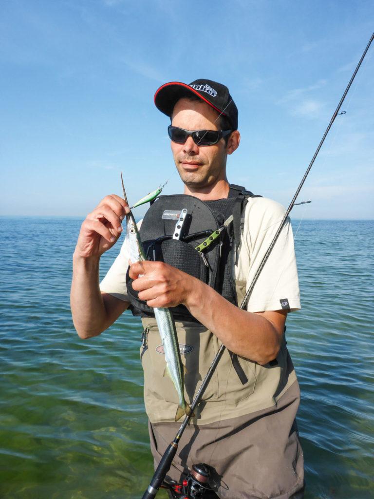 Eine tolle Alternative zum Naturköder sind beim Spinnfischen auf Hornhecht kleine Gummiköder. Sie werden hinter dem Sbirolino angeboten.