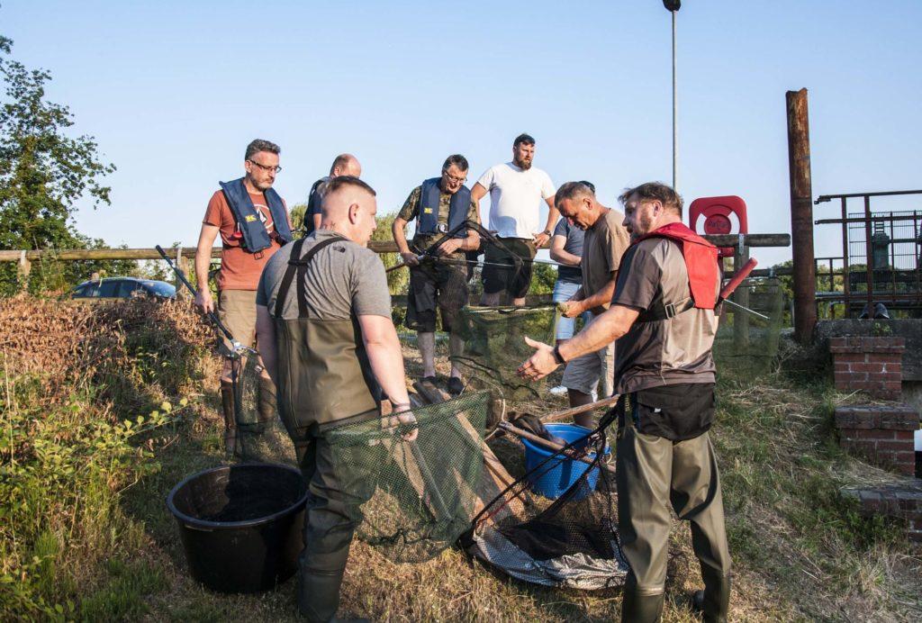 Gemeinsam stark: Angler aus verschiedenen Vereinen waren mehrere Tage mit der Rettung der Aale beschäftigt. Foto: LAVB / Marcel Weichenhan