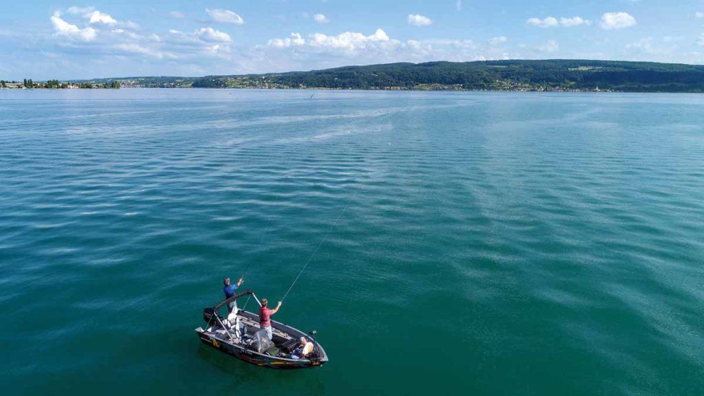Big Baits sollten Sie überall da einsetzen, wo Sie viel Fläche oder Wassersäule vorfinden. Wie hier, am Bodensee, über elf Meter tiefem Wasser. Foto: F. Pippardt